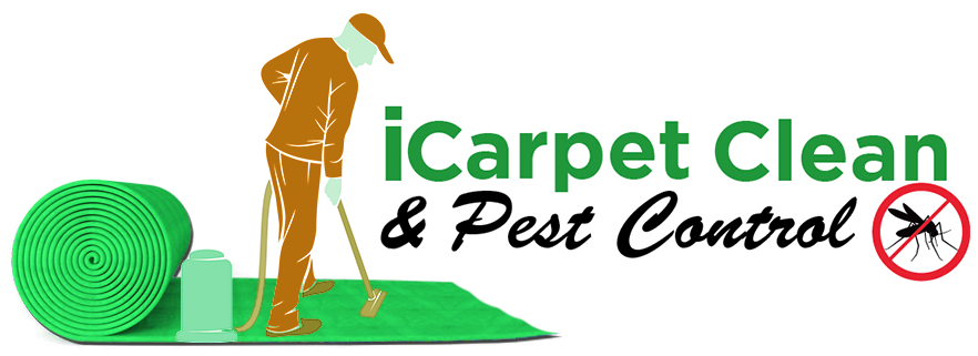 iCarpet Clean & Pest Control